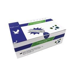 Healgen Rapid Covid Test Kit (20 Pack) PPPE402