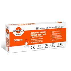 Panodyne SARS-CoV-2 Antigen Saliva Test Kit