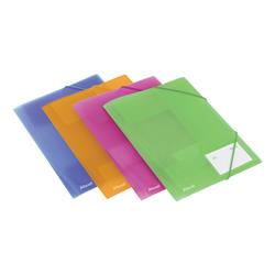 Rexel Ice File 4-Fold Durable Polypropylene Elasticated for 200 Sheets A4 Assorted Ref 2102050 - Pack 4