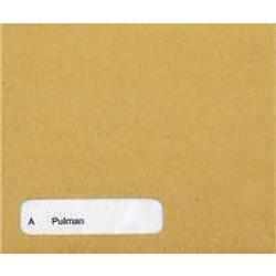 Custom Forms Sage Wage Envelope (1000 Pack) SE45